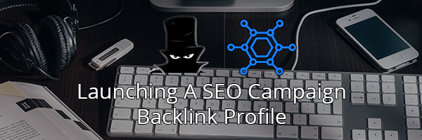 Get Backlinks For Your SEO Campaign. Web 2.0 & PBNs Work