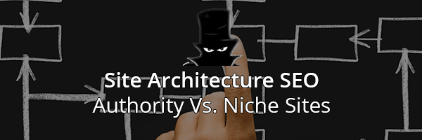 Site Architecture SEO: Authority vs Niche Websites