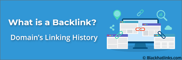 What is a Backlink: Referring Domain Linking History