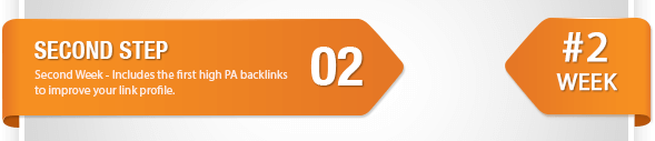 Buy Backlinks with the Ranking Guide Step 2